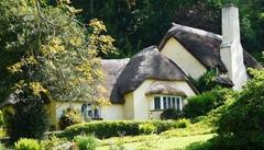 Cottage limewash