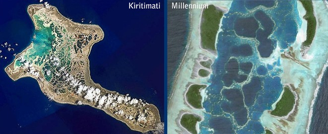Millennium CXI Reticulated