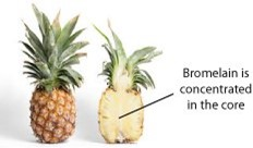 Pineapple_core-bromelain